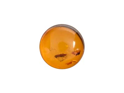 Ambre naturel, cabochon rond 8 mm
